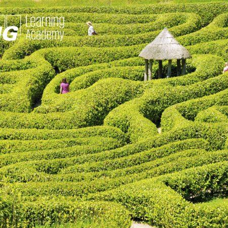 Navigating through Malta's International Tax Law Maze