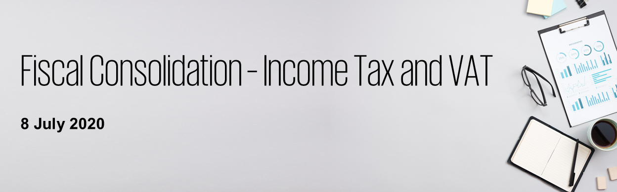 fiscal consolidation income tax and vat