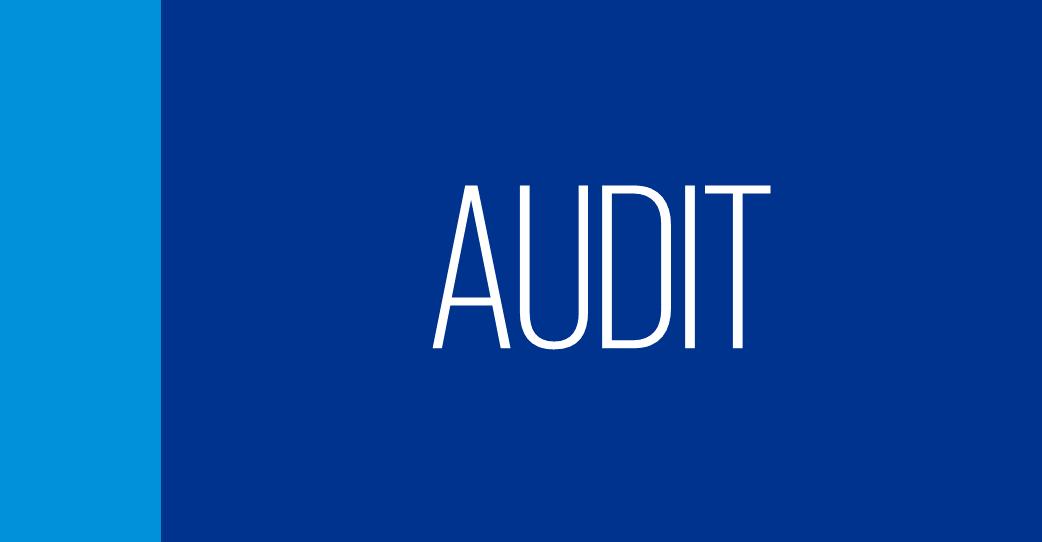 Audit Learning Suite